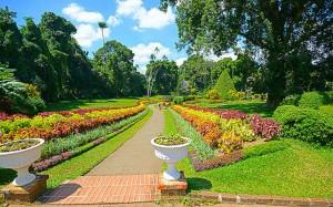 הגן הבוטני הענק שנמצא בעיר קנדי