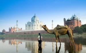 India-Yamuna-River-Trip-01